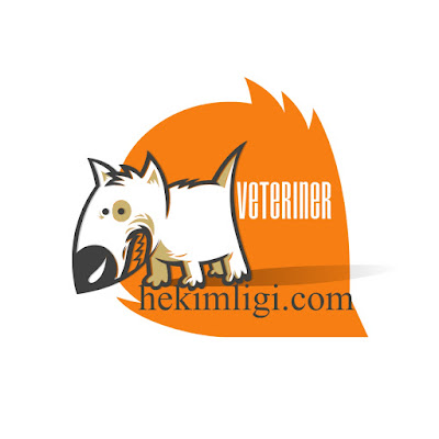 Tunceli-Veteriner-Klinikleri