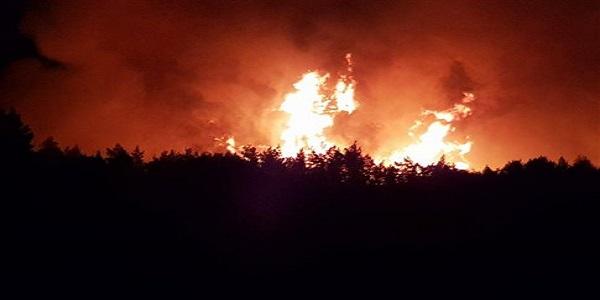 Μεγάλη φωτιά στη βόρεια Εύβοια, στάχτη το πυκνό πευκοδάσος
