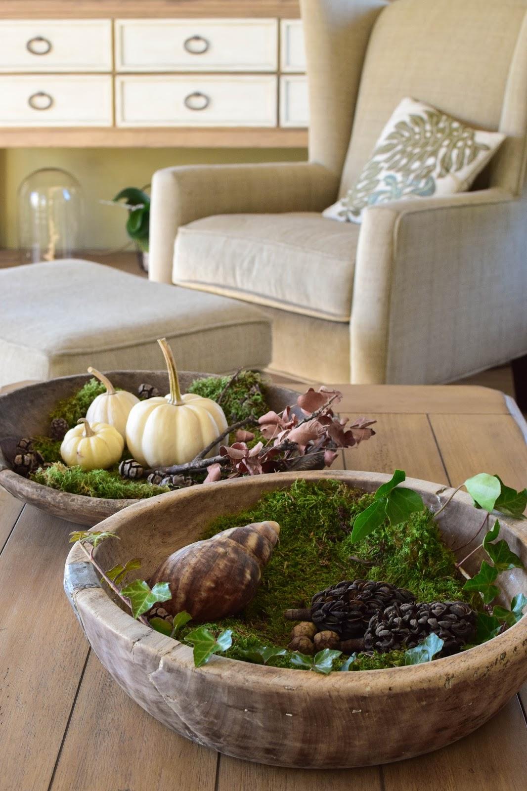 Deko mit Kürbis, Moos, Zapfen und Natur für Herbst und Winter. Dekoideen, Dekoration und Ideen für eine natürliche Deko in der Schale, Dekoschale