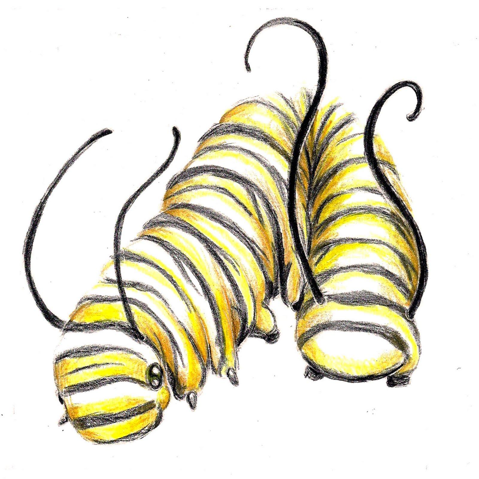 Kate Guthrie Zodiac Bugs
