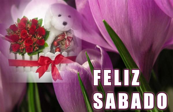 peluche junto a flores Feliz Sabado