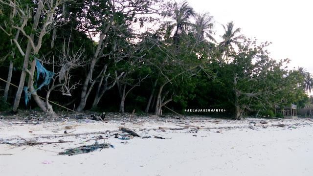 Pantai Mandala Ria: Hutan pantai yang rimbun  +fotojelajahsuwanto