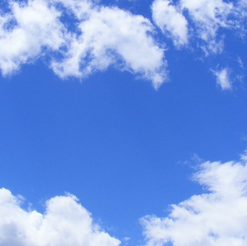 Q365 空の中にいる虫