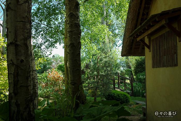 jardin japonais musica nigella, végétation près du pavillon de thé