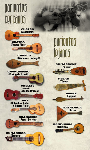 11 Ideas De Charango Charango Guitarras Pared De Guitarras