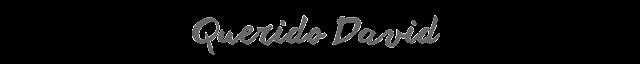 http://www.alfinaldelalibreta.com/2016/05/querido-david.html