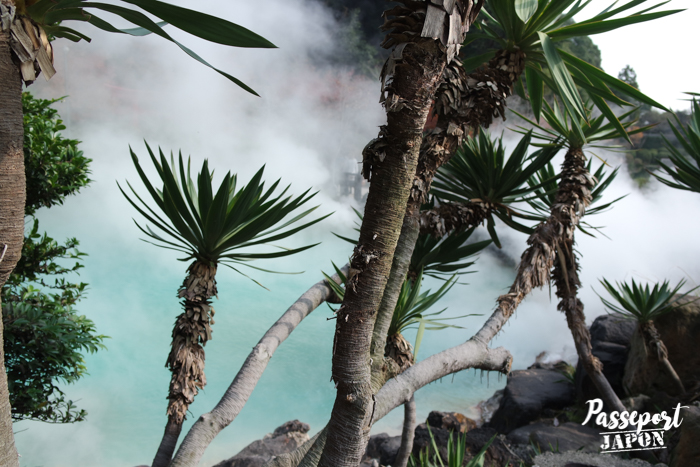 Végétation tropicale, Umi Jigoku, Beppu, Oita