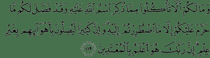 Surat Al-An'am Ayat 119