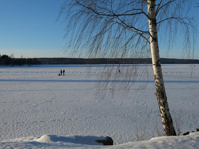 talvikuvat Vesijärvi