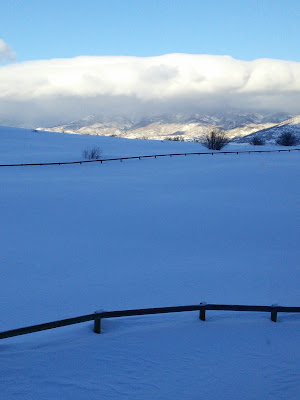 Image of fences in the snow tracing a natural design