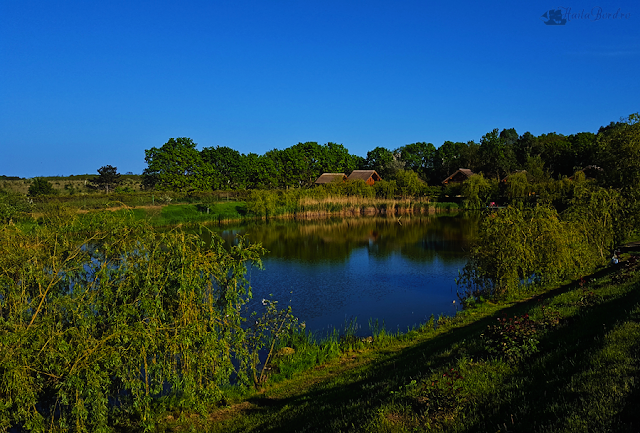 lacul racilor olimp