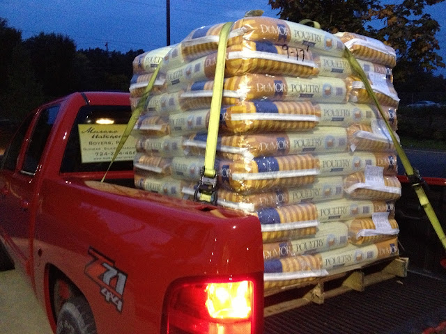 1 ton of chicken feed