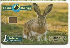 Tarjeta telefónica Liebre (Lepus europaeus)