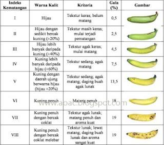 indeks kematangan buah pisang