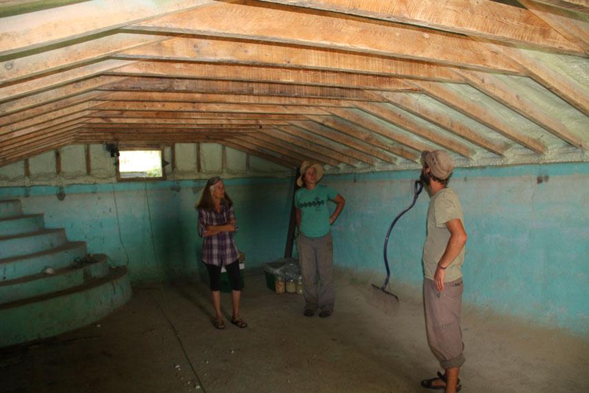 Seedy Stories Grower Visit Feral Fields Farm