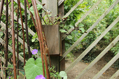 How to make a recuperated wood hanging planter