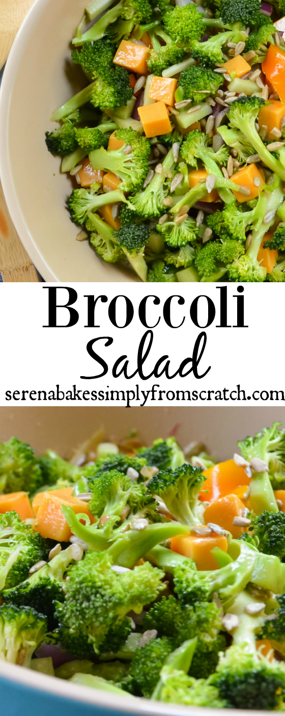 Crunchy Broccoli Salad in a light sesame vinaigrette filled with bell pepper, red onion, cheddar cheese and sunflower seeds makes this a delicious salad for summer time barbecues, gatherings and picnics. serenabakessimplyfromscratch.com
