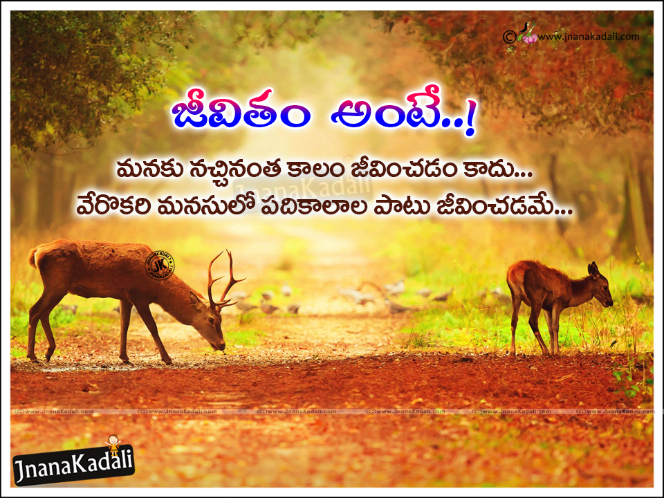 Meaning Of Life Quotes In Telugu