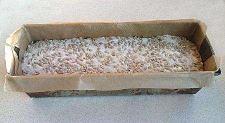 Chleb z ziarnami w formie