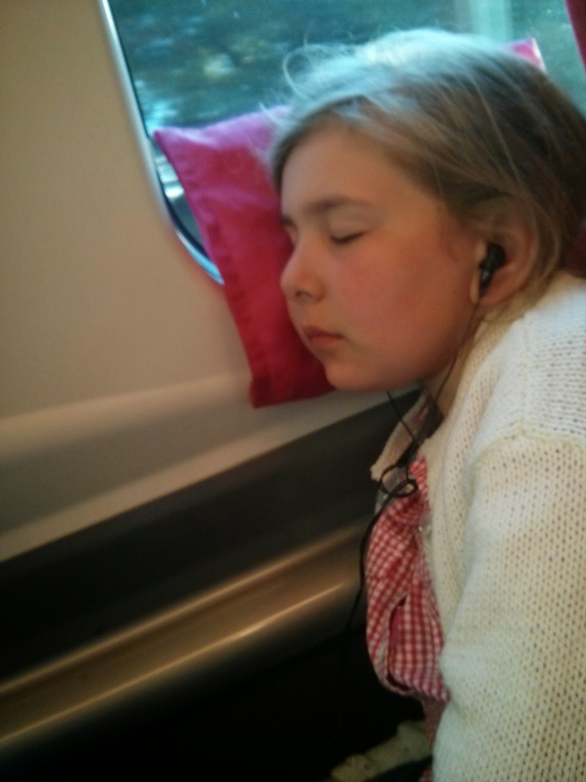 Top Ender asleep on the train