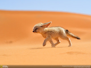 National Geographic Traveler Photo Contest 2013 : Outdoor Scenes—Week 6 Wallpaper