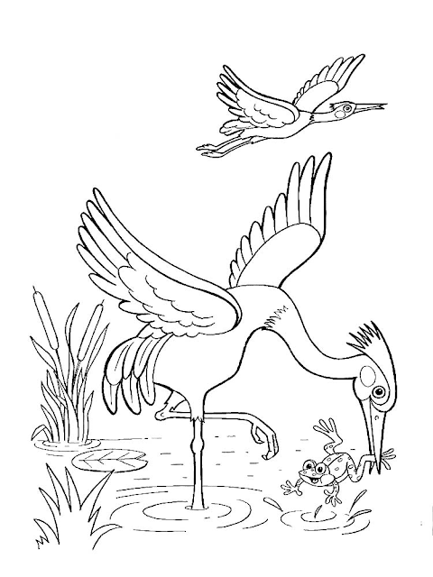 Mewarnai Gambar Burung Bangau - 7