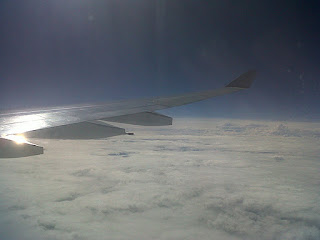 Brasil - Airbus A330, view of the wing
