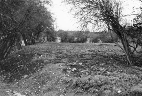 Image: Remains of the moat at Pancake Hall, Dixons Hill Close 1982 Image from the former North Mymms Local History Society Part of the Images of North Mymms Collection