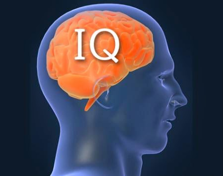 5 Ciri ciri manusia yang Memiliki IQ Tinggi