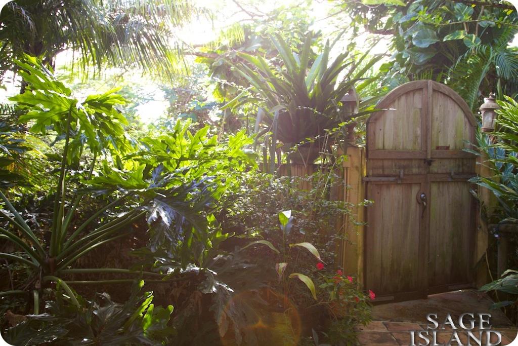 Sage Island: Secret Tropical Garden on St Thomas