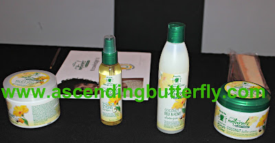 Universal Beauty Products Inc Jamaican Mango & Lime Haircare Products