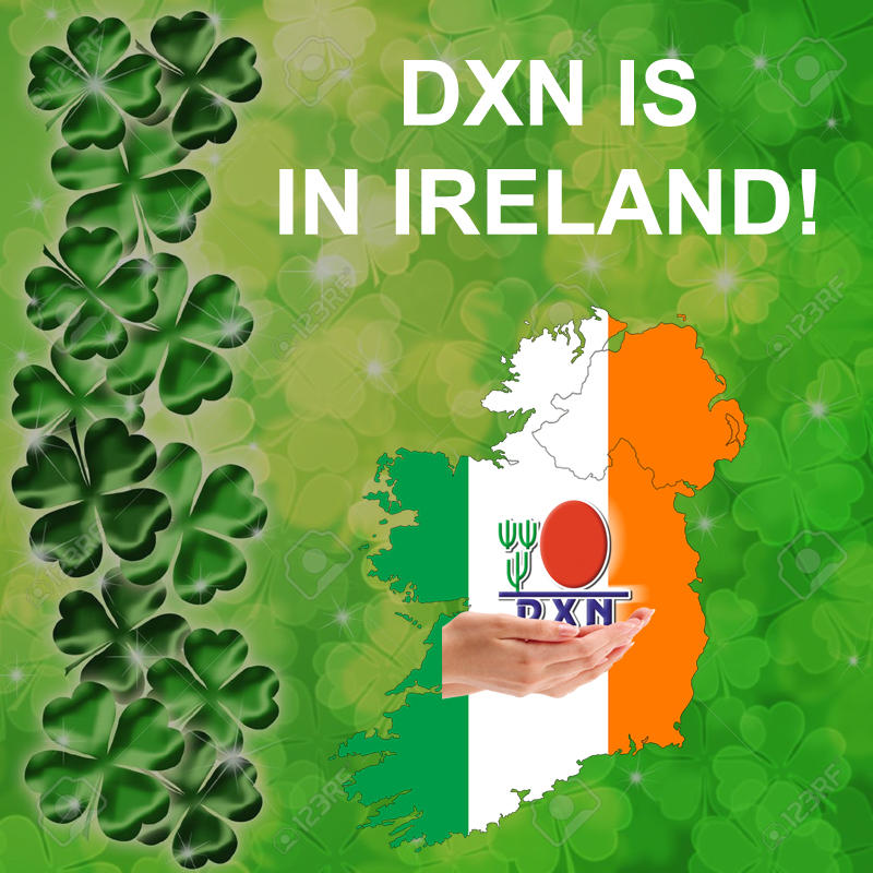 dxn ganoderma business ireland