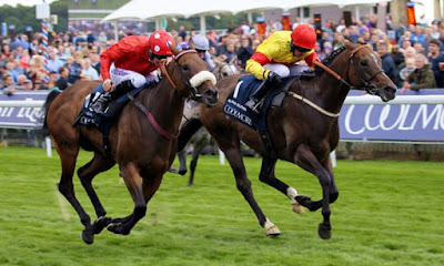Alpha Delphini Nunthorpe Stakes (Group one) Winner for Bryan Smart