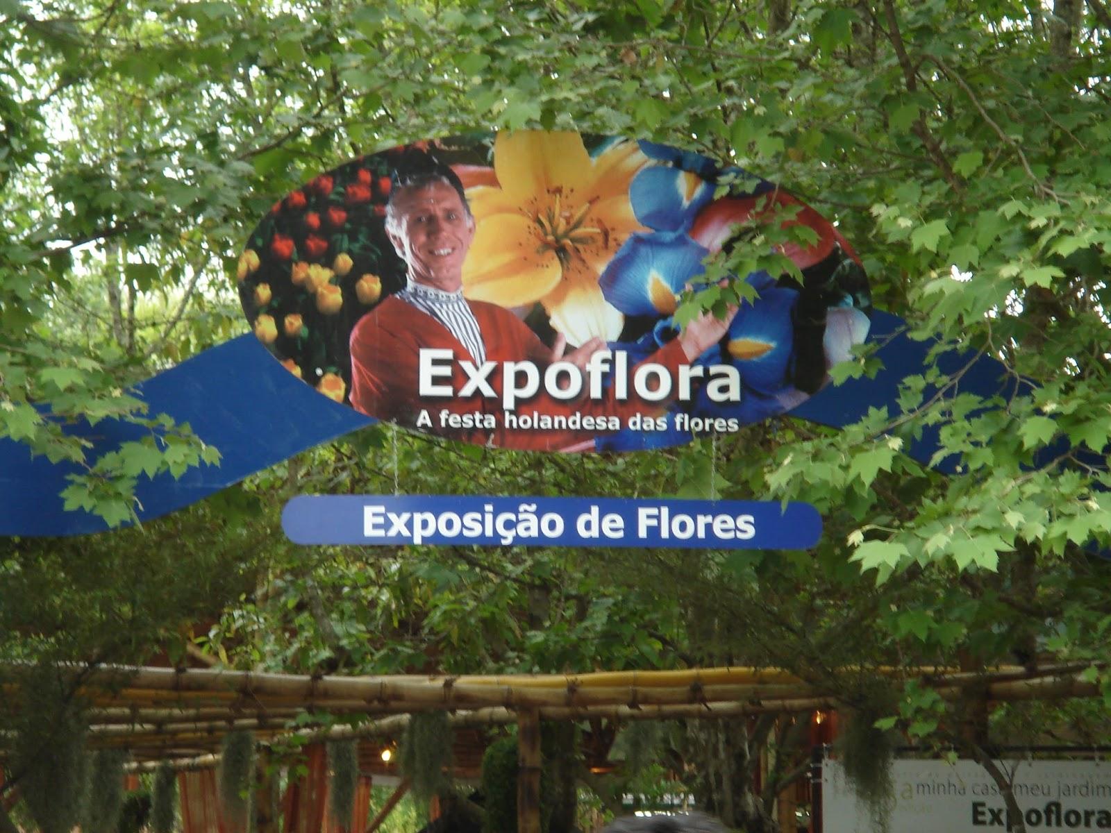 Holambrasp Cidade Das Flores Experimentos De Viagens