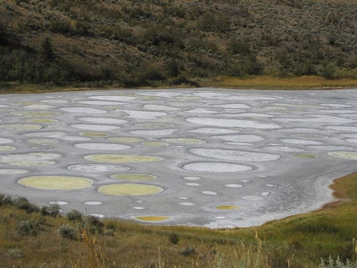 "Spotted Lake is a saline endorheic alkali lake located northwest of Osoyoos in British Columbia in Canada. It is located near the city of Osoyoos, beside Highway 3, near the U.S. border, Spotted Lake is known for its ""leopard"" landscapes"
