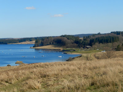 6 Family Things to do at Kielder - Guest Post by Rural Teacake, Lakeside Way