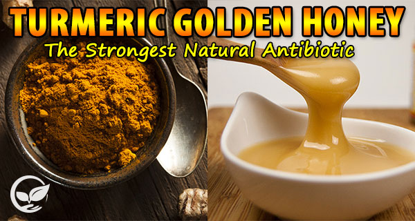 Turmeric-Golden-Honey-The-Strongest-Natural-Antibiotic