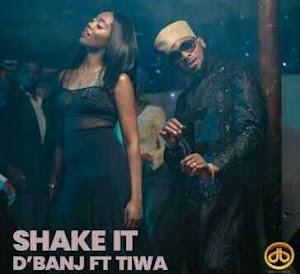 Download Mp3 | D'Banj ft Tiwa Savage - Shake It