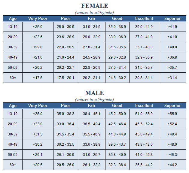average body fat percentage by sport