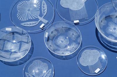 松本クラフトフェア2017 ガラス作家・安達知江 ガラスの器