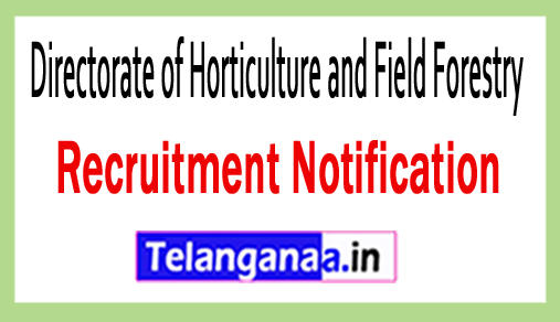 Directorate of Horticulture and Field Forestry DHFF Recruitment