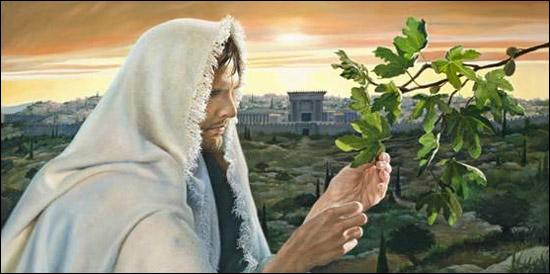 Mathayo 24:34 Amin, nawaambia, KIZAZI HIKI HAKITAPITA, hata hayo yote yatakapotimia.   35Mbingu na nchi zitapita; lakini maneno yangu hayatapita kamwe.