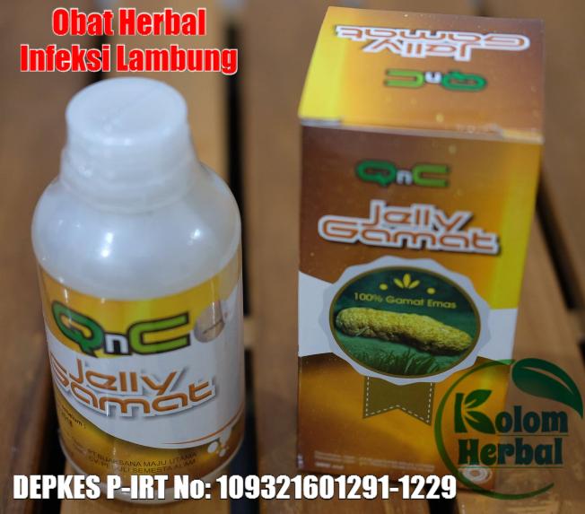 Obat Herbal Penyakit Infeksi Lambung