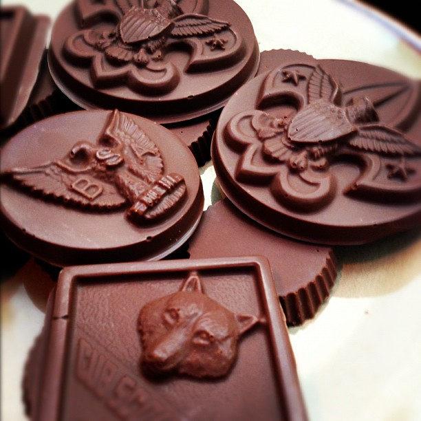 Mistledoe Tempering Chocolate Boy Scout Candy Molds