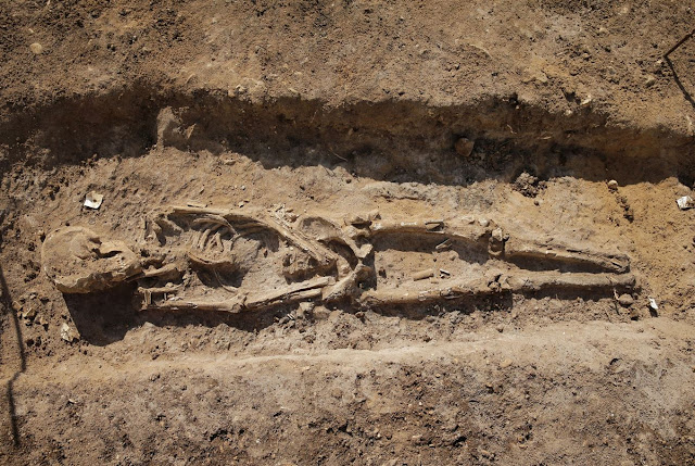 Ancient cemetery unearthed in Lebanon