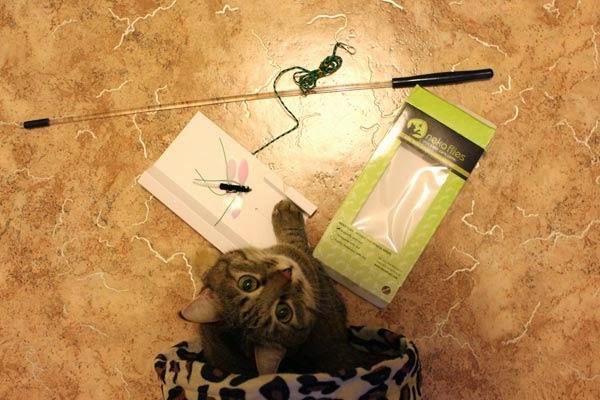 игрушки для кошек фото