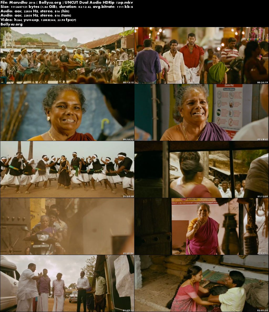 Marudhu 2016 HDRip UNCUT Hindi Dubbed Dual Audio 720p Download