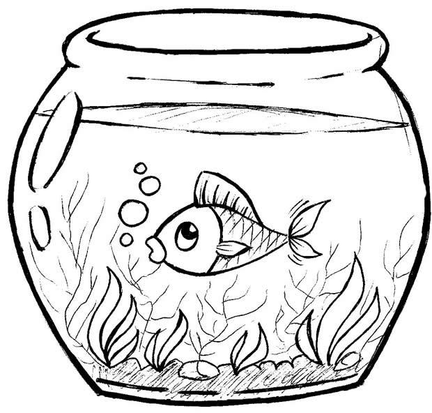 Desenhos De Peixes Coloridos Para Imprimir