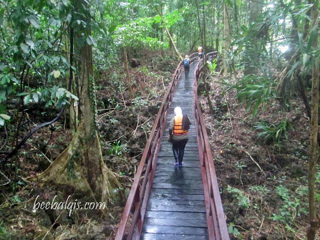 Menuju Danau Ubur-ubur tak menyengat di Pulau Kakaban Indonesia