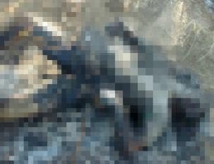 Encuentran cuerpos calcinados en Tepotzotlán con narcomensaje